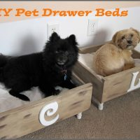 Pet Drawer Beds
