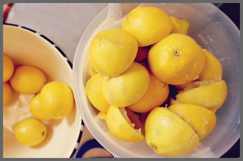 Lemons at Sparkles of Sunshine