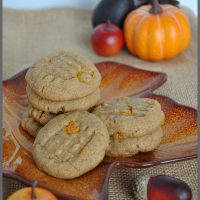 Delicious Peanut Butter & Pumpkin Spice cookies recipe from Sparkles of Sunshine is easy to make with just 3 ingredients. Perfect cookie for the fall season!