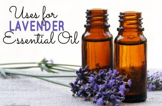 Uses for Lavender Essential Oil