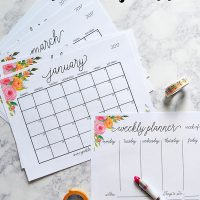 40+ Awesome Free Printable 2017 Calendars and Planners - Sparkles ...