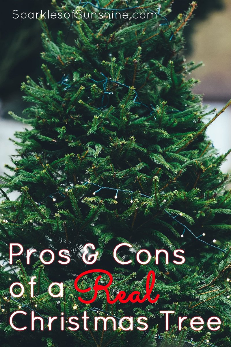The Pros and Cons of a Real Christmas Tree - Sparkles of Sunshine