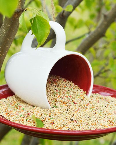 How to Make an Upcycled Coffee Mug Bird Feeder